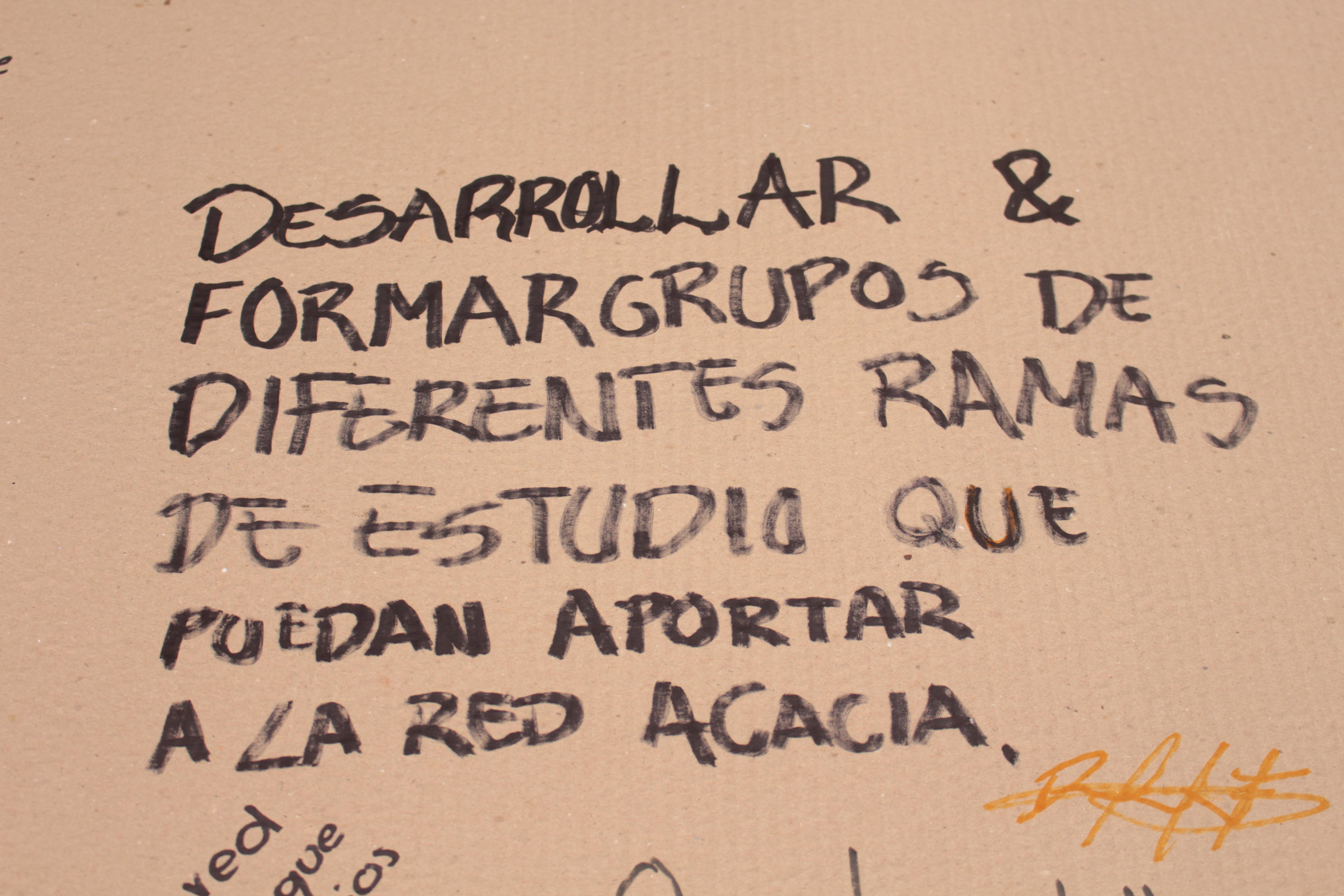 Desarrollar y formar grupos de diferentes ramas de estudio que puedan aportar a la Red Acacia