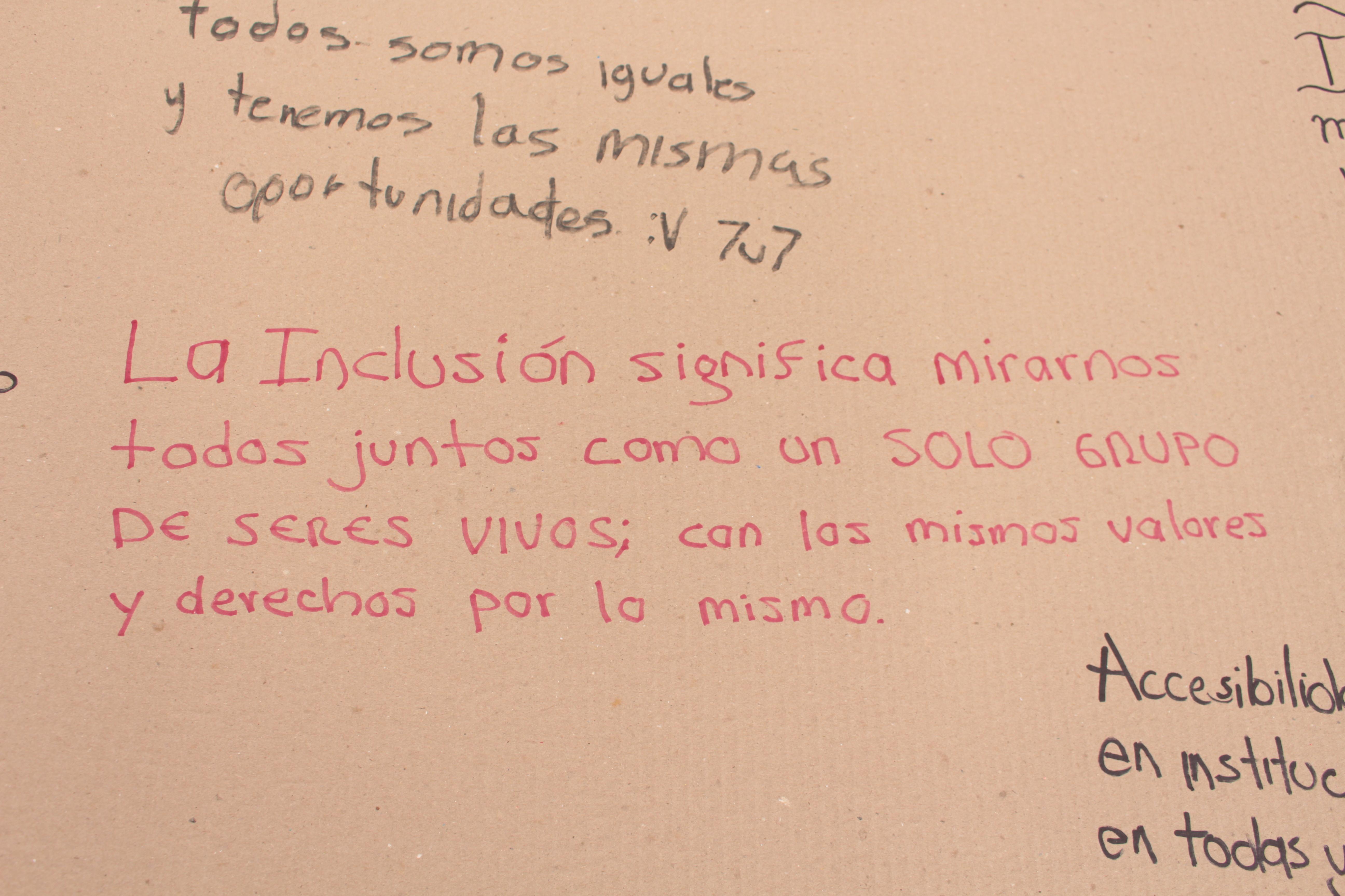 La inclusión significa mirarnos todos juntos como un solo grupo de seres vivos con los mismos valores y derechos por lo mismo
