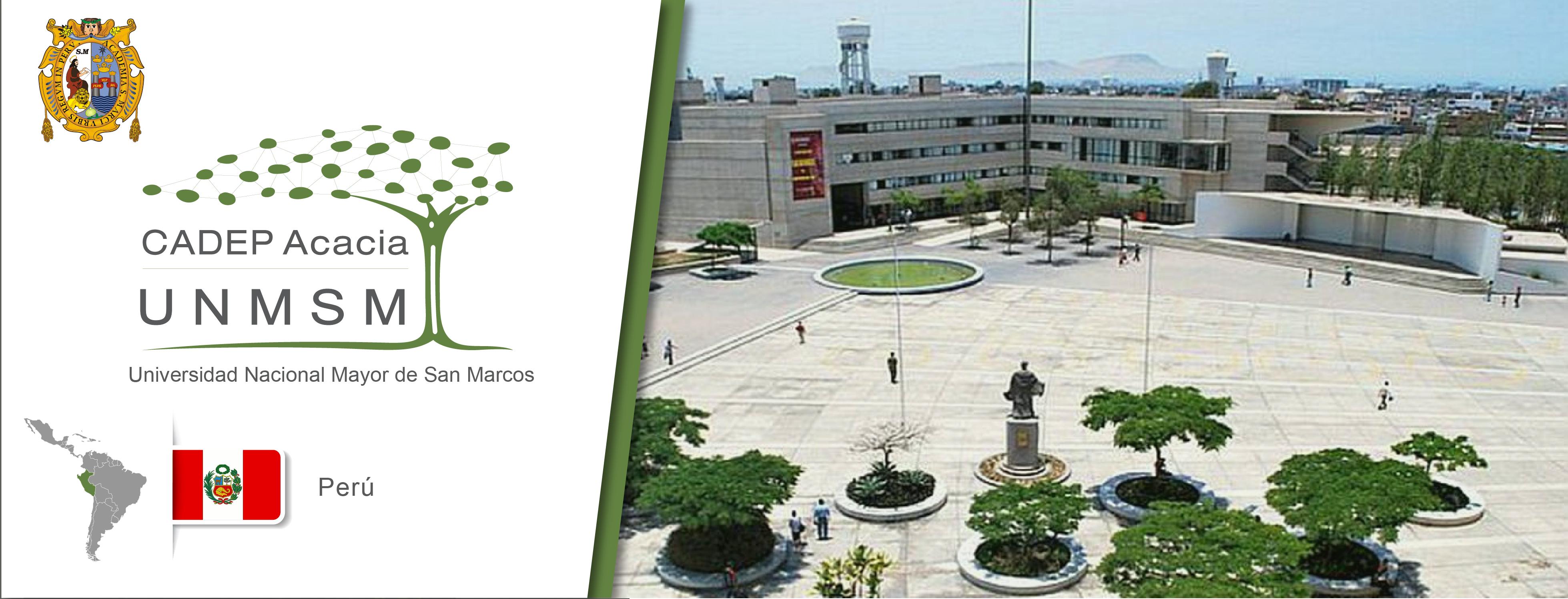 Logo de la UNMSM, logo del CADEP UNMSM, bandera de perú y una imagen que muestra la universidad